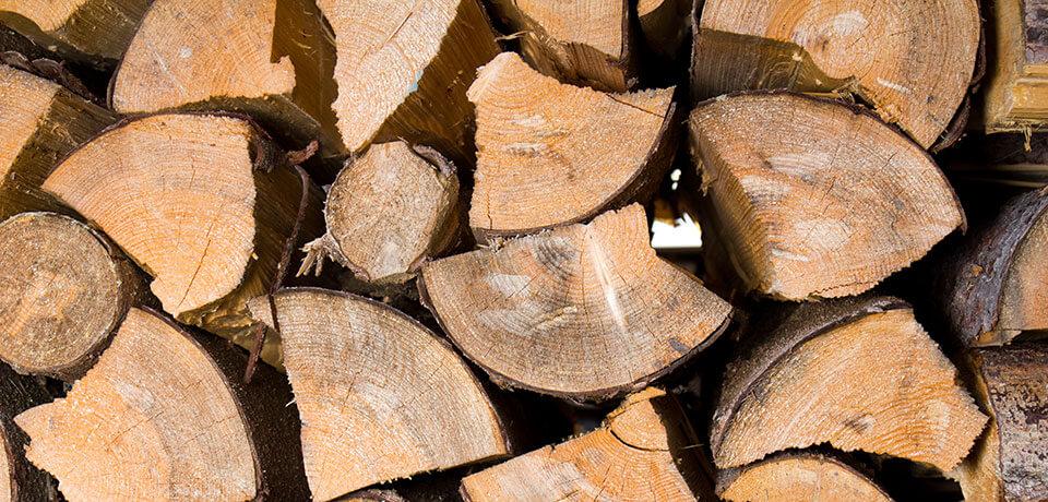 Brennholz für Bremen