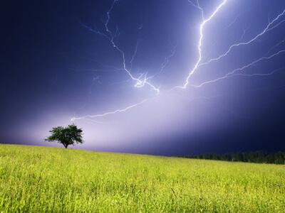 Umweltfreundlicher Strom kann auch günstiger Strom sein.